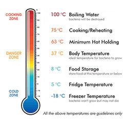 What Temperature Kills Bacteria in Food?