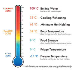 What Temperature Kills Bacteria in Food?